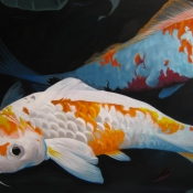 koi pond detail